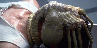 Alien Facehuger