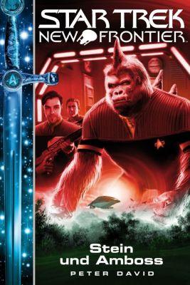 Star Trek - New Frontier 13 Stein und Amboss